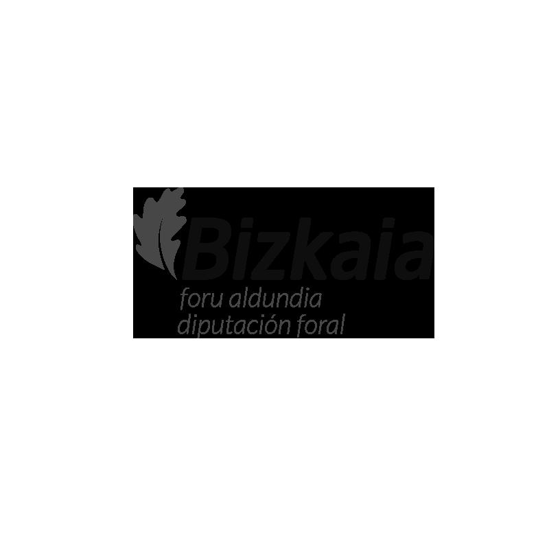 cliente-diputacion-foral-bizkaia